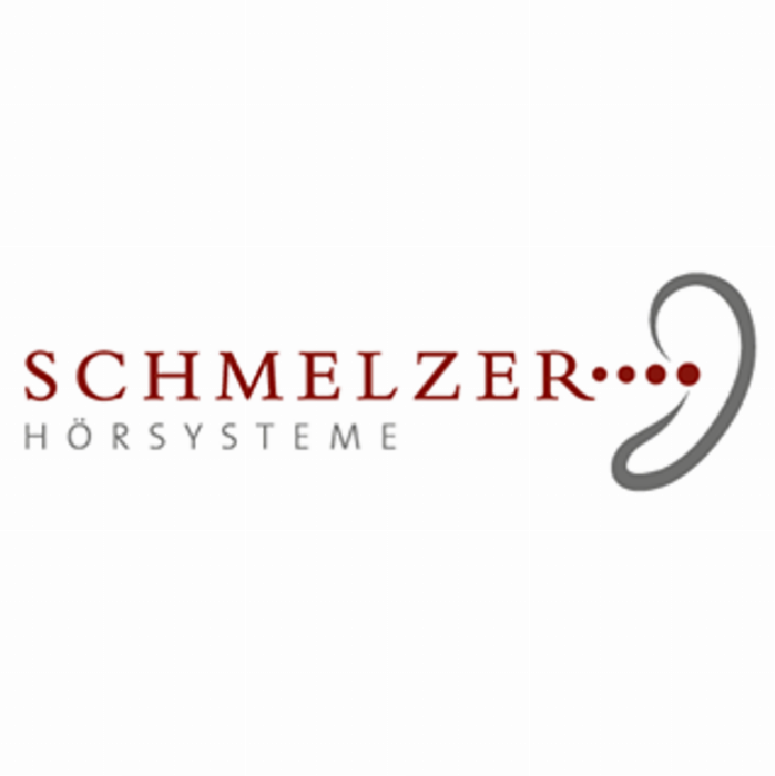 https://schmelzer-hoersysteme.de/