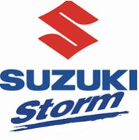 https://www.suzuki-storm.de/