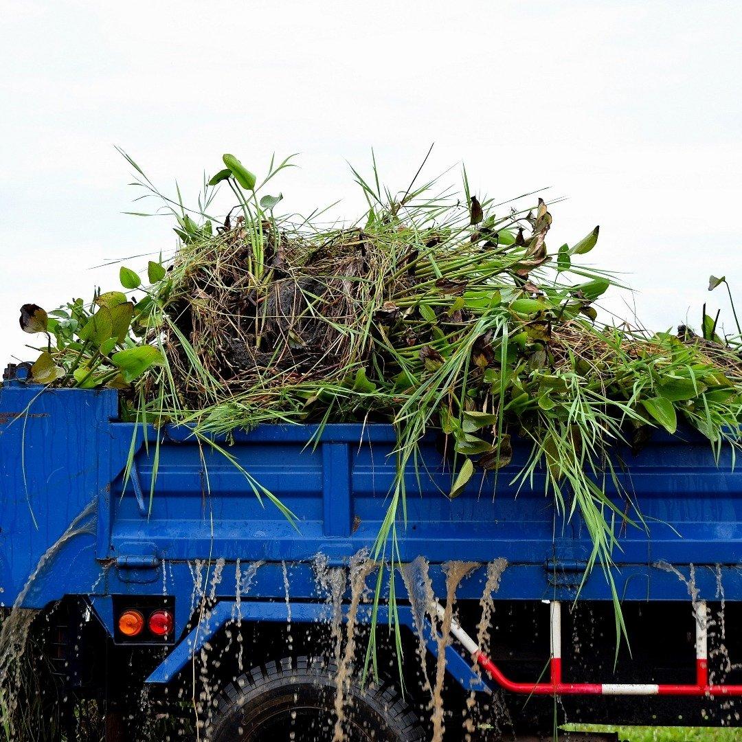 Graf Abfallbeförderung und - entsorgung in 24109 Kiel