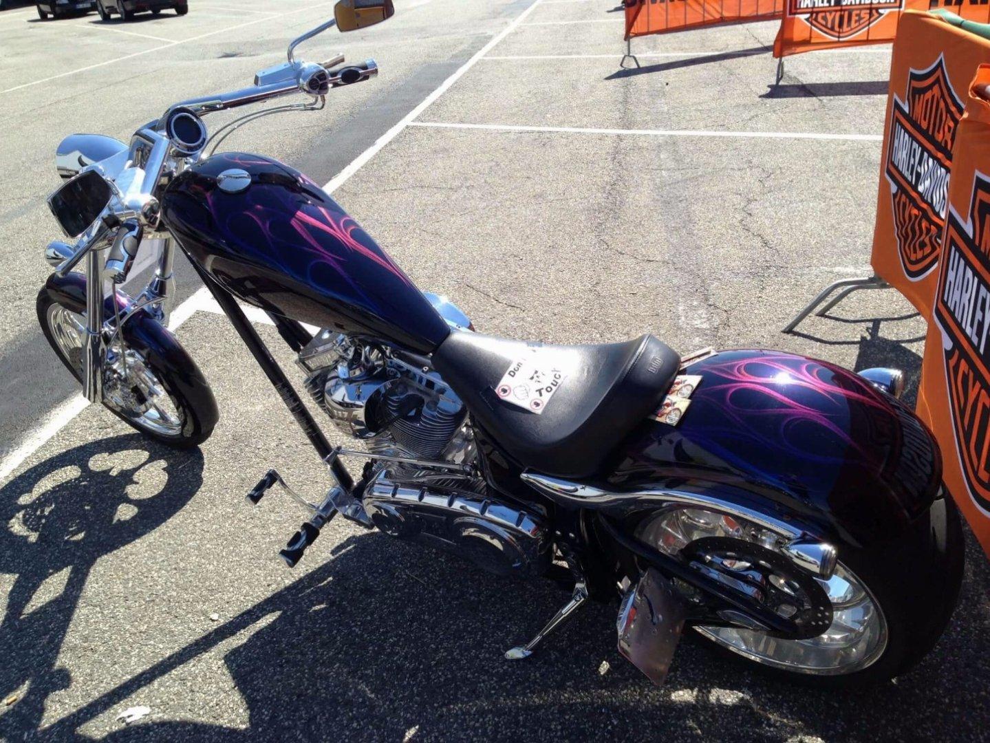 Big Dog Motorcycles K 9 300HR Custom Chopper Gecko Flames