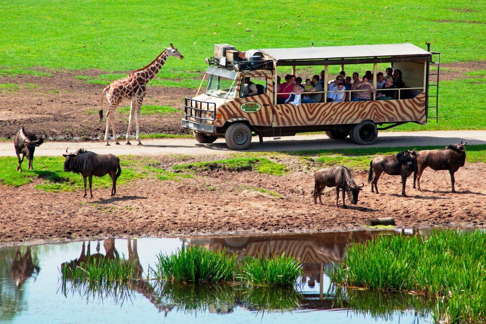 serengeti park hodenhagen gmbh in 29693 hodenhagen logistikwelt24. Black Bedroom Furniture Sets. Home Design Ideas