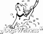 Hundesalon Dogs Wellness